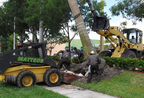 Amazing Matteou0027s Landscaping Company Inc Provides Full Commercial Landscape  Maintenance Services